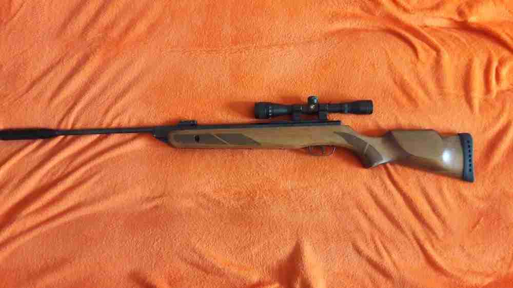 Gamo hunter 1250