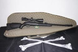 GAMO CFX + Remington AirMaster 77.